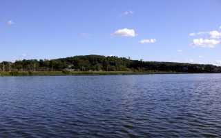 Рыбалка в красносельском районе