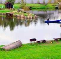 Рыбалка мытищинский район