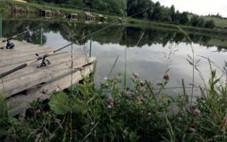 Рыбалка в кузьмищево калужской области
