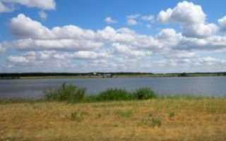 Камышные озера далматовский район