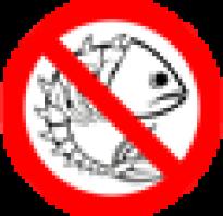 Марьино марий эл рыбалка