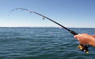 Рыбалка николаевка крым