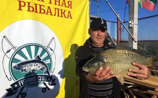 Рыбалка в сотниково ступинский район 2017
