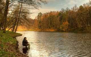 Ловля плотвы осенью в пинске
