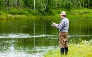 Рыбалка петушинский район