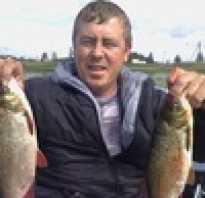 Рыбалка в колпино