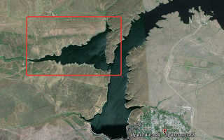 Сом на ириклинском водохранилище