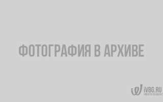 Озеро большое всеволожский район рыбалка