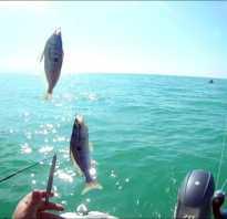 Рыбалка в черном