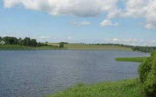 Река благуша рыбалка