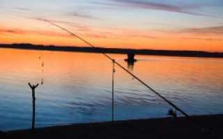 Озеро жужгово курганская область