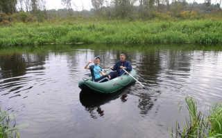 Псковская область пушкиногорье рыбалка