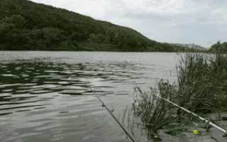 Ищеино липецкая область рыбалка