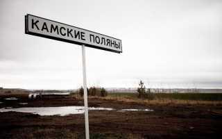 Прогноз клева камские поляны татарстан