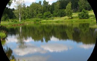 Зимняя рыбалка в ясногорске тульской области