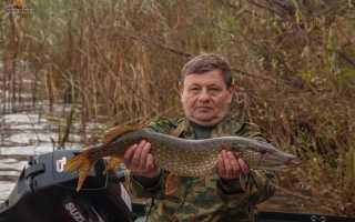 Рыбалка на леща в нижегородской области
