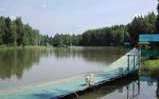Рыбалка в румянцево московская область