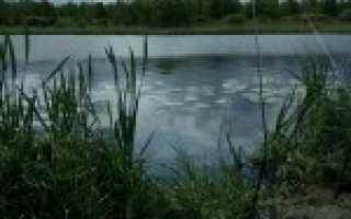 Рыбалка в полесске калининградской области