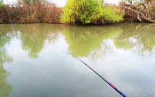 Казачий ерик ростовская область рыбалка