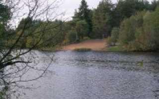 Калугино серпуховский район пруд