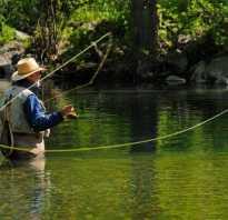 Рыбалка город лесной