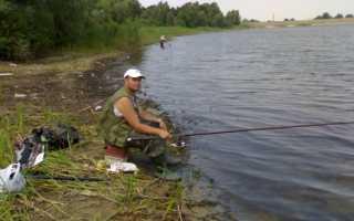 Рыбалка на суде