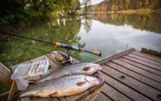 Село крутое астраханская область рыбалка