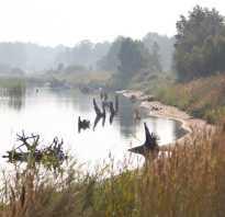 Рыбалка на озере большой куяш