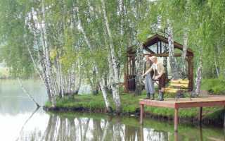Мансурово истринский район рыбалка