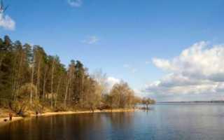 Пироговское водохранилище температура воды сейчас