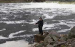Рыбалка в сосновом бору
