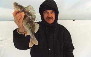 Гаютино пошехонский район рыбалка