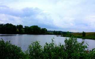 Шварцевский пруд