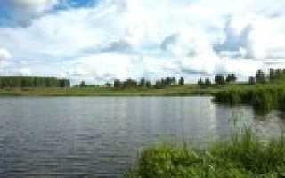 Рыбалка в александровском районе владимирской области