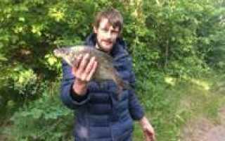 Рыбалка в гороховке воронежская область