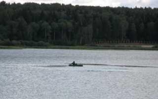Торбеево озеро какая рыба водится