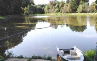 Рыбалка в шарапово чеховский район московская область