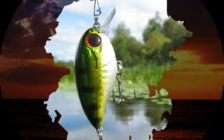 Рыбалка на цивиле
