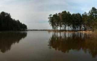 Озеро новый путь красноярск