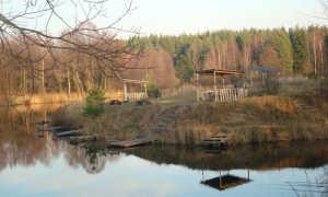 Деревня маврино рыбалка