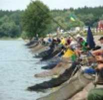 Рыбалка в рогозянке