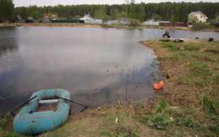Рыбалка подрезовский пруд