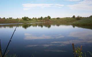 Пруд в липовке перепеловский воронежская область