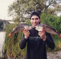 Пахотино рыбалка