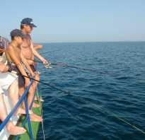 Рыбалка в джанкое