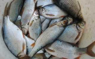 Рыбалка в воскресенском районе нижегородской области