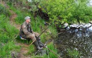 Рыбалка в рублево