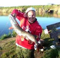 Нижние караси рыбалка