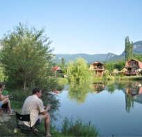 Рыбалка село соколиное