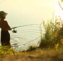 Рыбалка в благовещенске